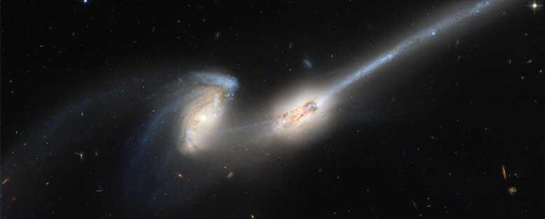 cosmos1-1280