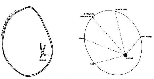 Орбита Сириуса В в представлении догонов (слева) и по наблюдениям астрономов