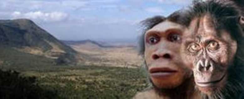 оррорин предок людей
