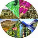 Происхождение жизни на Земле 2