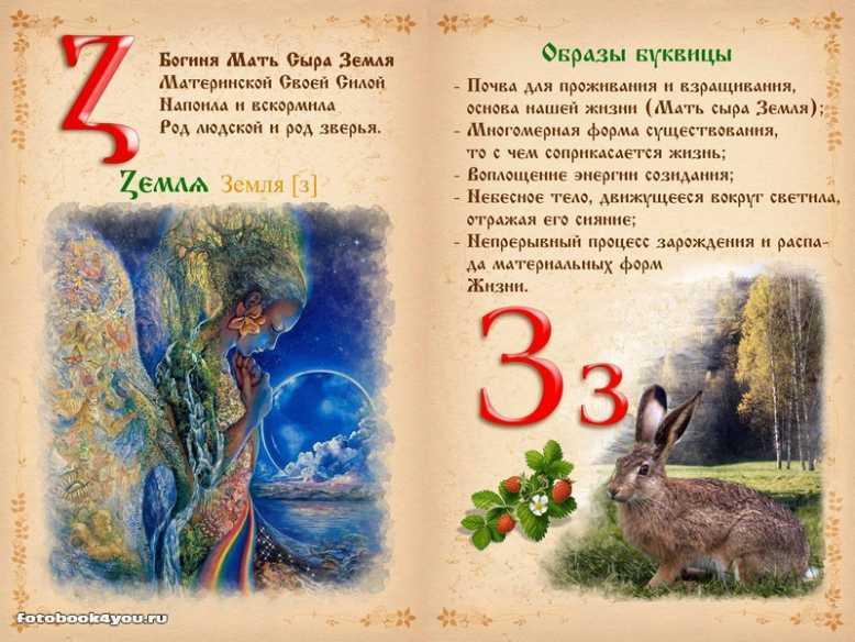 azbuka13