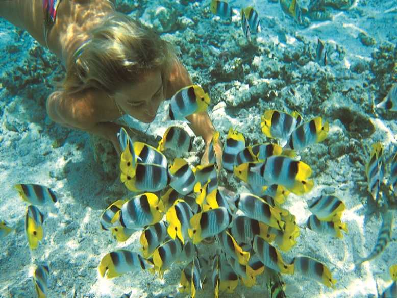 Таити и коралловые острова Полинезии