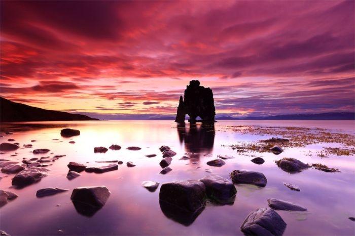 каменный дино