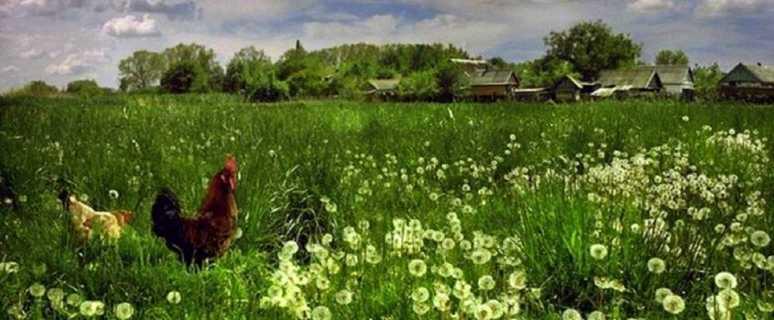 фото самой красивой деревни