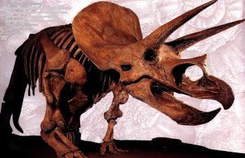 Падение чиксулубского метеорита или 65 млн.лет назад 2