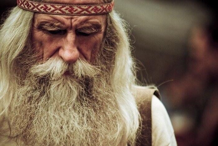 Зачем мужчине борода 1