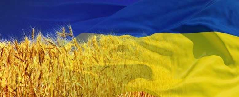 Украина управление хаосом