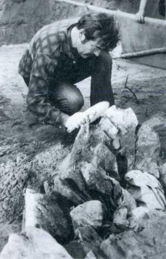 Очень древняя стоянка человека в Диринг-Юрях 4