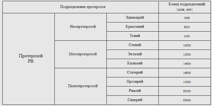 протозой, деление