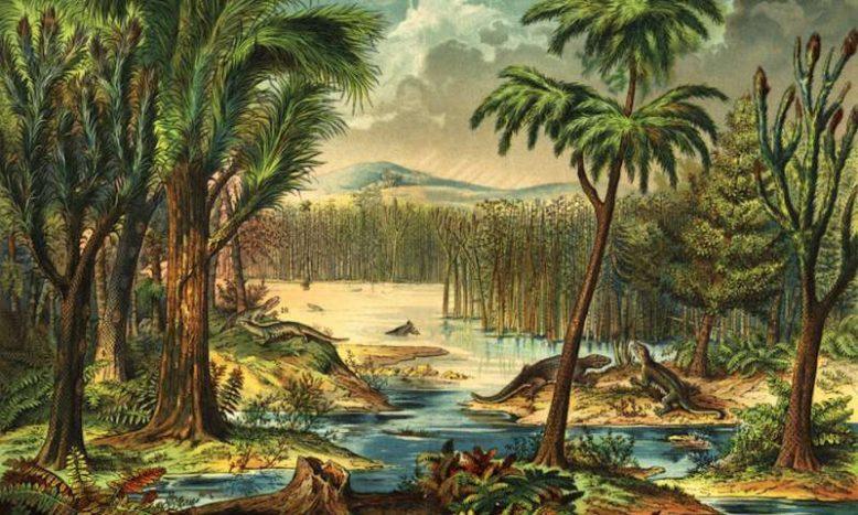 растения мелового периода