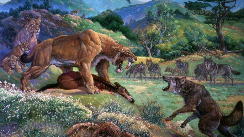 Кайнозойская эра Земли. От Палеогена до наших дней 3