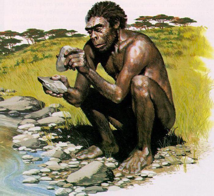 Эволюция человека – древний человек и этапы развития 2