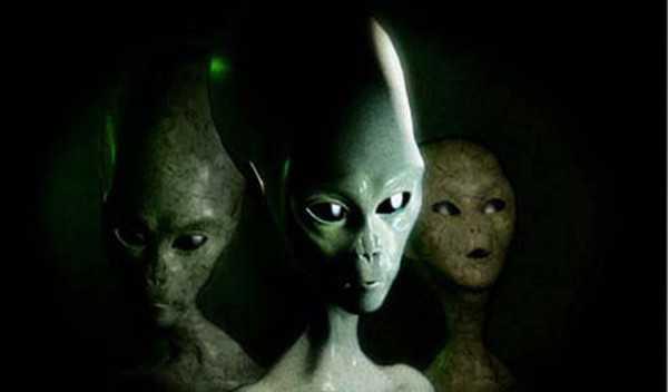 7 инопланетных рас. Не все, но основные по мнению уфологов 6
