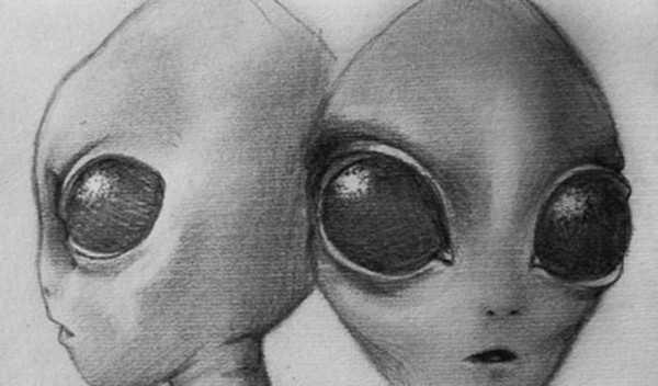 7 инопланетных рас. Не все, но основные по мнению уфологов 2