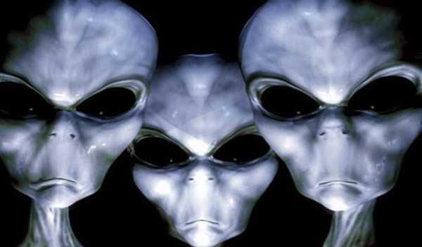 7 инопланетных рас. Не все, но основные по мнению уфологов 1